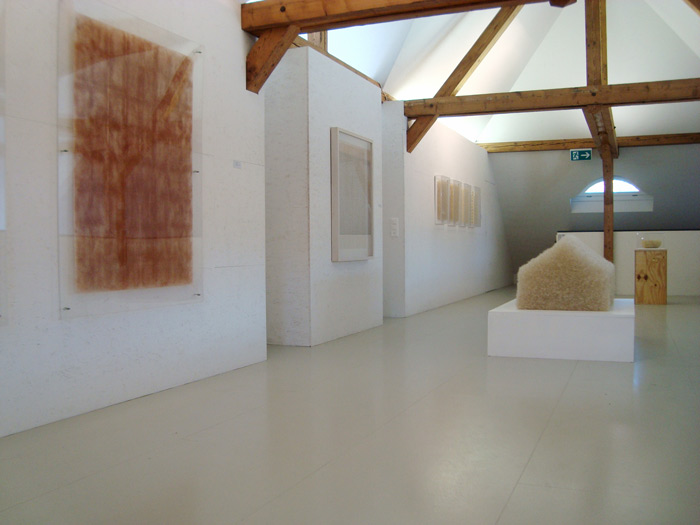 kunsthalle-wil1